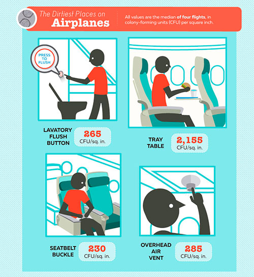 airline-hygiene-exposed-ig